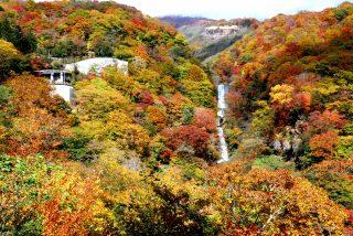 日光の紅葉はいろは坂から楽しみましょう。