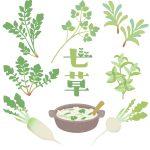 七草がゆを食べる意味は?七草とは何?