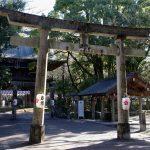 四国で初詣!行くならここ!アクセスや混雑状況