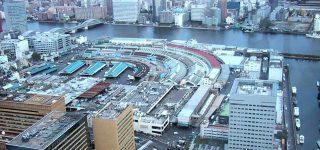 日本橋にあった魚市場が築地に移った歴史!徳川家康が魚市場を作っていた!