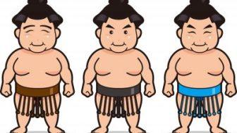 相撲の廻しのさがりについて解説!すぐ取れるのはある意味があった!